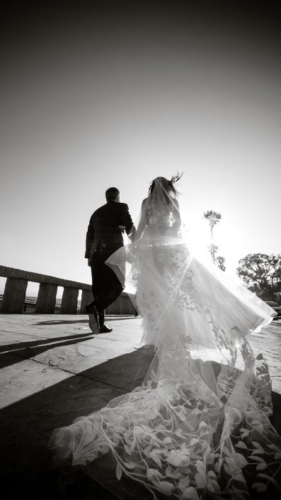 Levine Fox Destination Weddings