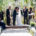 levine fox weddings